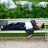 Atelier quel dormeur suis-je en entreprise - Pass-Zen Event
