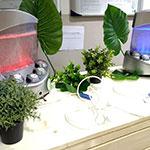 bar à oxygène dans un séminaire d'entreprise ou dans un espace 5 sens