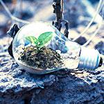 Organisez un team buildilng sur le thème du développement durable - Pass-Zen Event